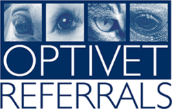 Careers : Association of Veterinary Anaesthetists